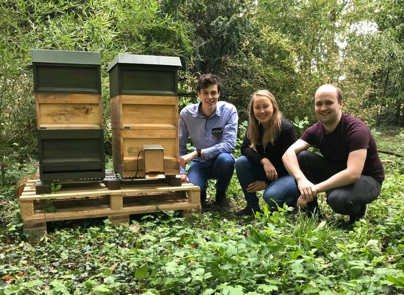 Bienen retten mit künstlicher Intelligenz!